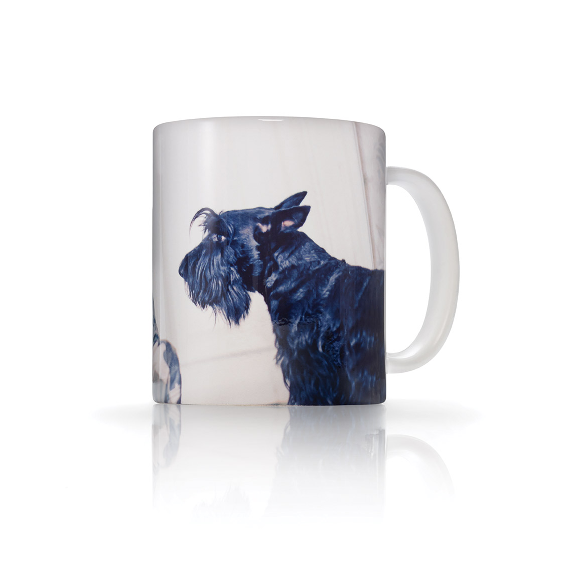 Icon 11 Oz. Photo Mug