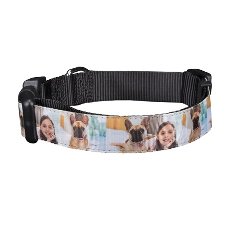 Large Pet Collar